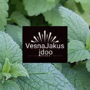 Vesna Jakus j.d.o.o.